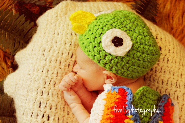 https://hodgepodgecrochet.wordpress.com Parrot Baby